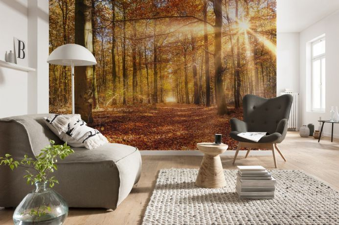 Golden Dawn forest giant paper wallpapers by Homewallmurals